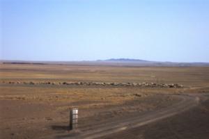 Gobi Desert Cabinet, 2012, Digital Collage
